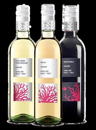 revino_bottle corallo.png