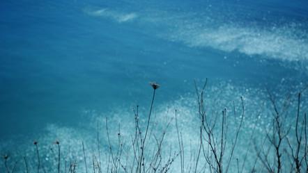 "Photography - ""Solitude Series"""