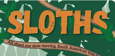 Sloth Infographic-Title