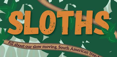 Sloths Infographic