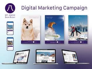 Mt. Hachi Digital Marketing Campaign