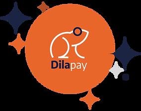 dilapay-ciacci-dilazione-rate-carta-di-c