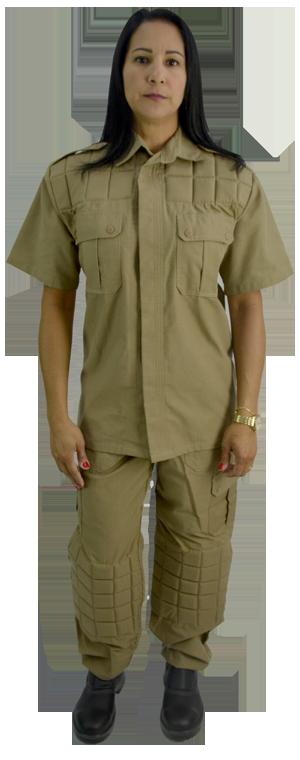 uniformes c6