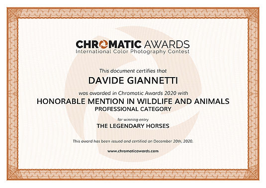 chromaticawards_certifcate_Davide_Gianne