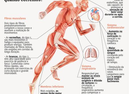 O que acontece no corpo quando corremos