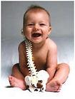 postnatal osteopathy, worcester postnatal, postnatal services