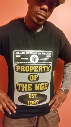 PROPERTY OF THE NGE
