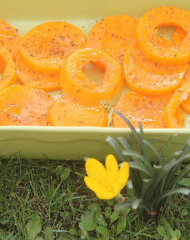 Tranches_de_Butternut_grillees_pour_Fred