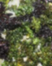 chips choux kale.JPG