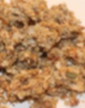 granola fruits secs.JPG
