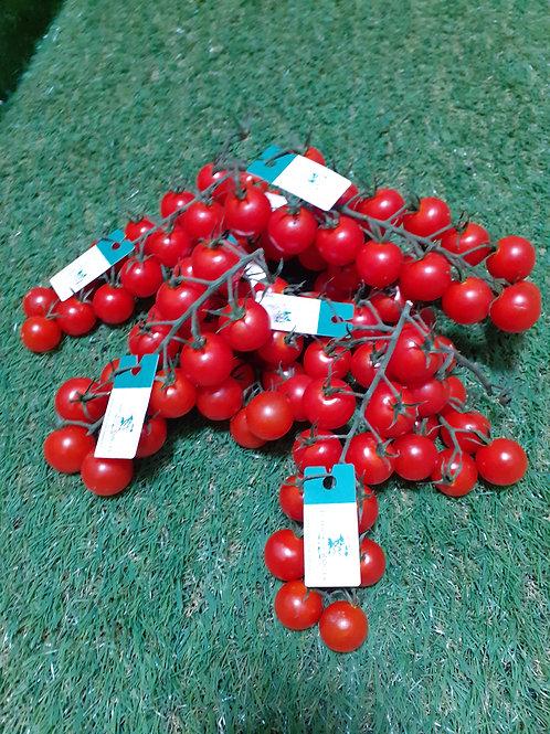 Tomate Cerise Rabelais, les 250g