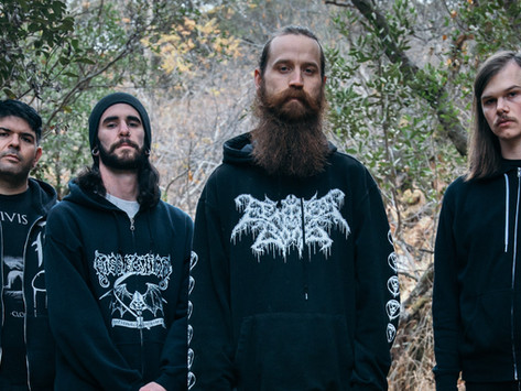 Descending Deeper: WOLF KING - The Path of Wrath Review