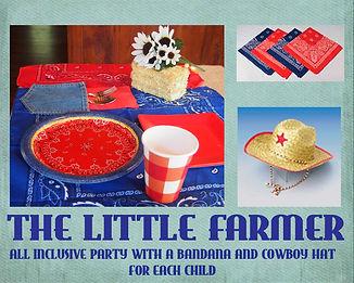 Little Farmer all-inclusive birthday party