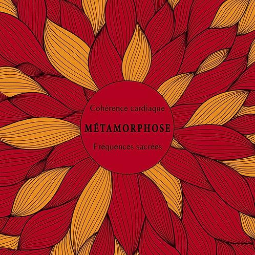 ALBUM MÉTAMORPHOSE