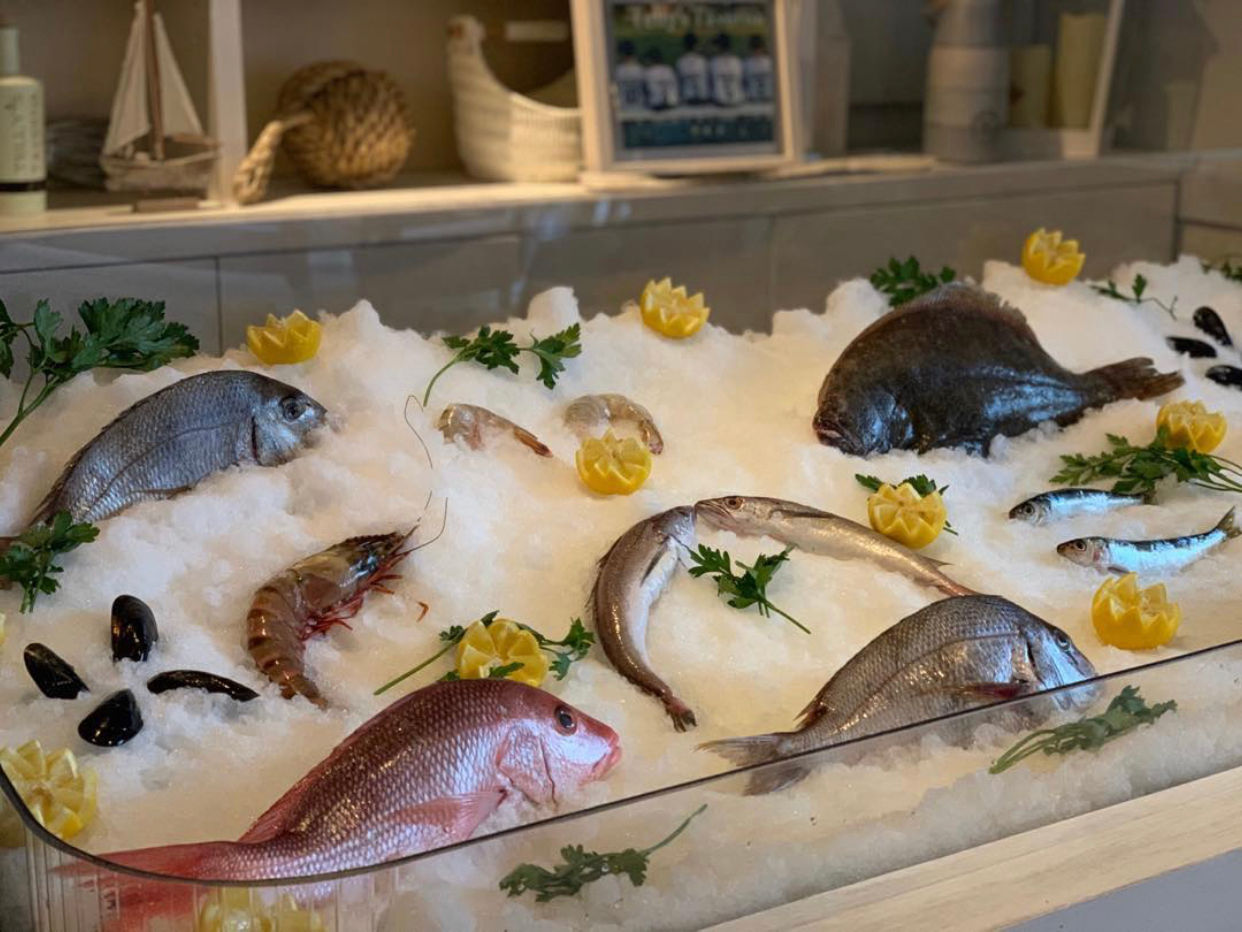 fish display.jpg