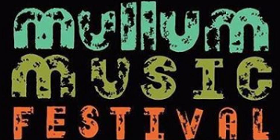 Mullum Music Festival   14 to 17 November, 2019