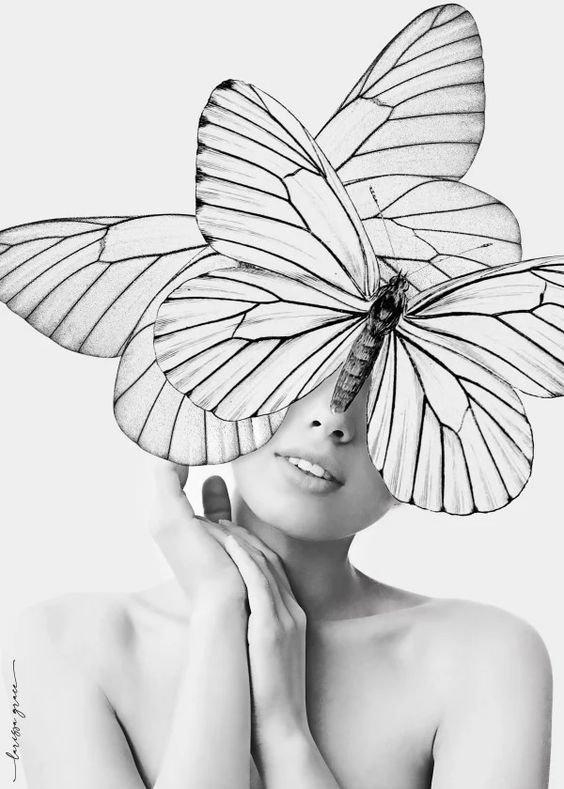 butterfly.2.jpg