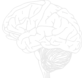 BRAIN TEST IMAGE.png