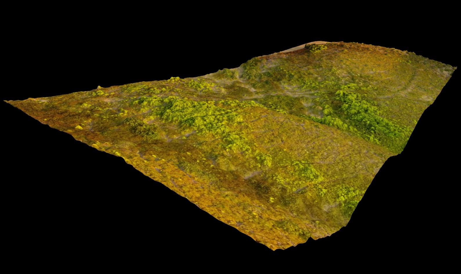 3D_Model_Mesh_Surface_Aerial_Shot.png