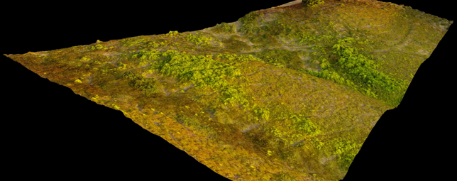 3D_Model_Mesh_Surface_Aerial_Shot.png