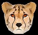 guepard.png