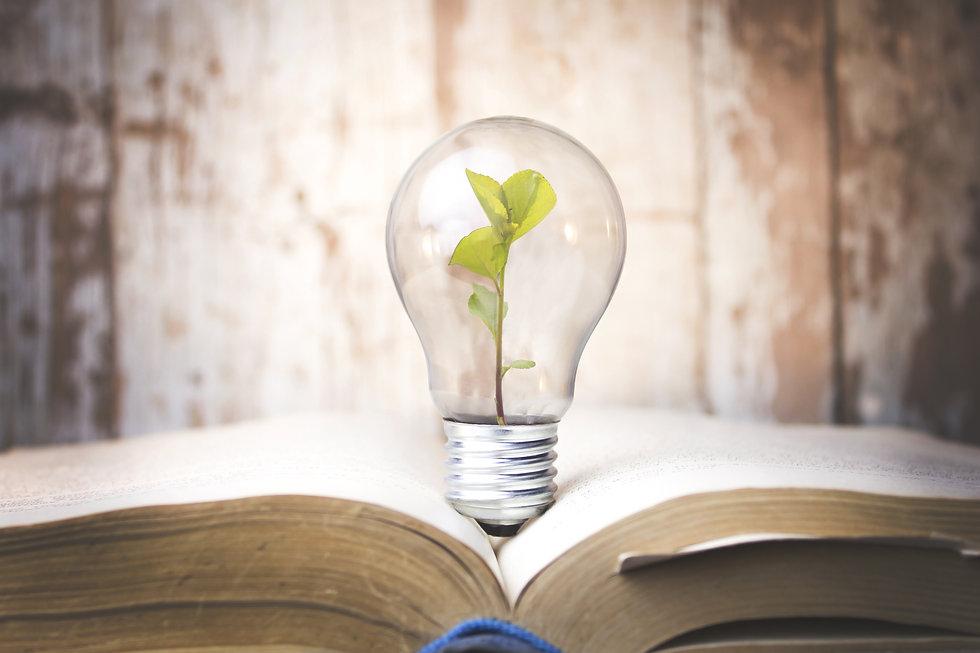 plant growing in lamp in book.jpg