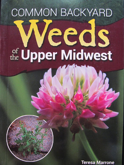 Common Weeds of the Upper Midwest