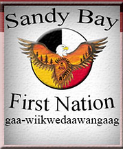 sandy.PNG