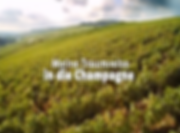 Youtube Vendanges en Champagne