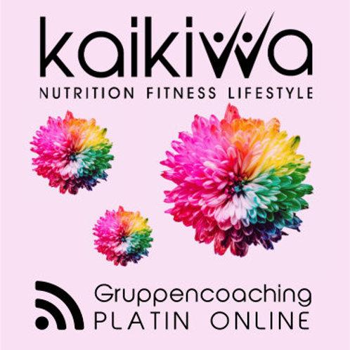 Platin Online Gruppen-Coaching-Abo10 Std.