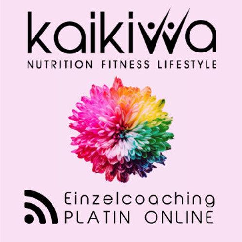 Platin Online Einzel-Coaching-Abo10 Std.