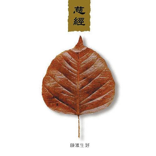 The Chant of Metta 慈经(Mandarin Narration)