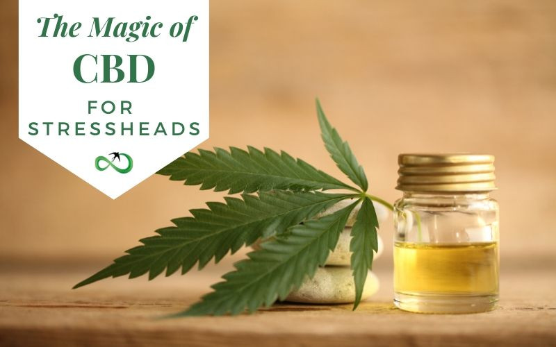 The Magic of CBD Oil for Stressheads