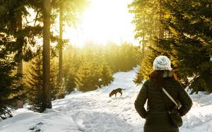 Walk within nature