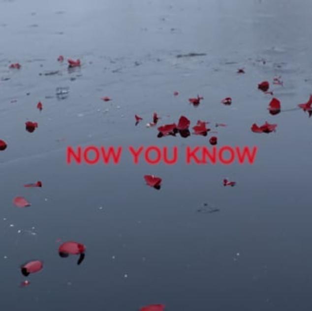 Now You Know x Cody Varik