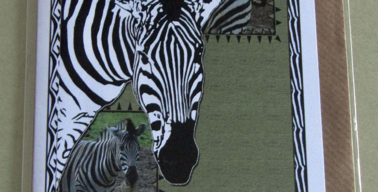 Zebra Greeting Card - For You