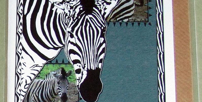 Zebra Greeting Card - Best Wishes
