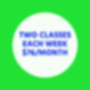 ONE CLASS PER WEEK $38_MONTH (1).png