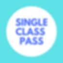 Single class pass.png