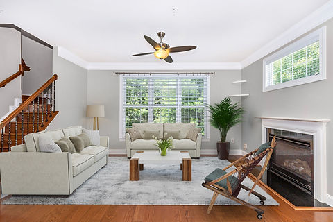 living room fan fave 12.jpg