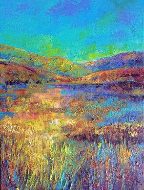 Light on landscape  £170