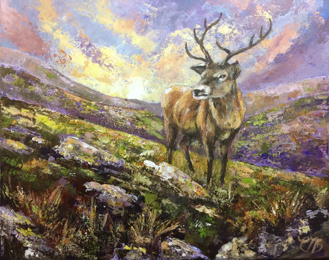 King of the Mountains £375