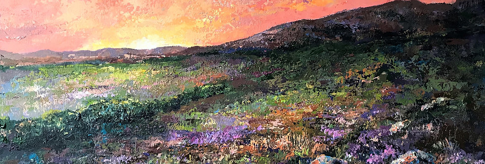 Evening on the Moors