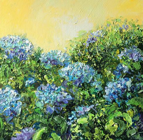 Blue Hydrangeas 2 £195