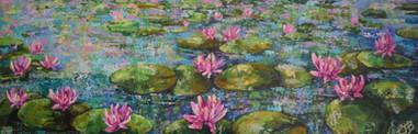 Waterlilies SOLD