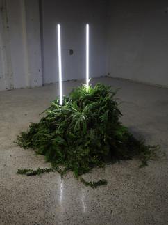 Untitled Installation 2