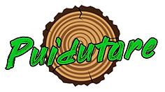 Puidutare logo small.png