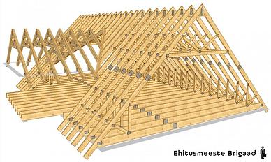 Puidutare_ehitusmeeste_brigaad_katused.p