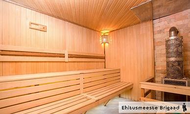 Puidutare_ehitusmeeste_brigaad_saun.png