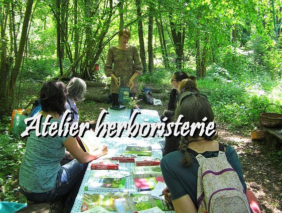 Atelier herboristerie.jpg